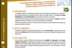 Hors-série du magazine Capital (Extraits)