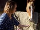Equitation pour les Internes