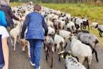Une rentrée pastorale